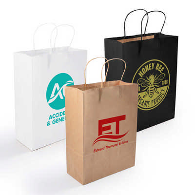 Express Paper Bag Medium  (LL548_LLPRINT)