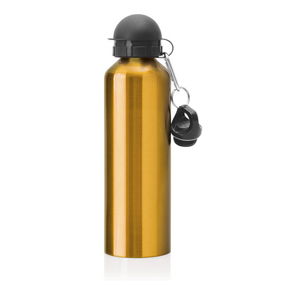 Stainless Steel Drink Bottle 750ml (M245H_GLOBAL)