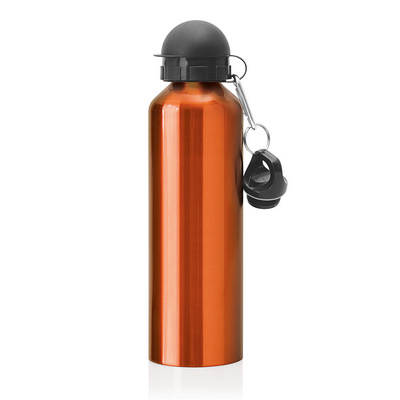 Stainless Steel Drink Bottle 750ml (M245I_GLOBAL)