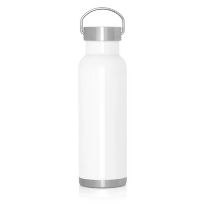 540ml Double Wall Stainless Bottle - Handle Lid (M292A_GL_DEC)
