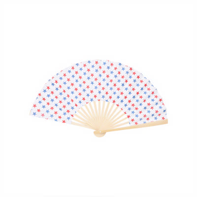 Chinese Foldable Fan (PCH135_PC)