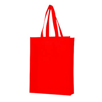Non Woven Bag with Large Gusset (PXB021_PC)