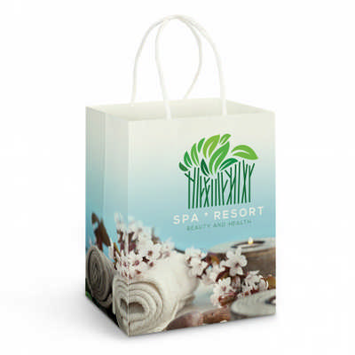 Large Paper Carry Bag - Full Colour (116937_TRDZ)