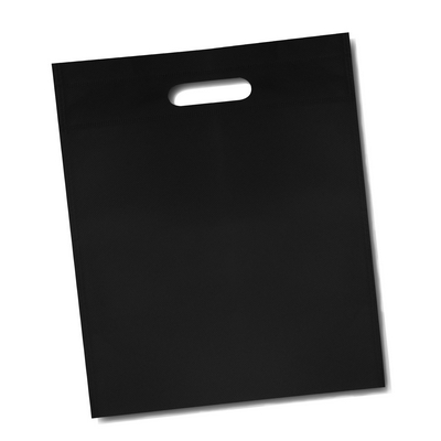 Document Bag (large)