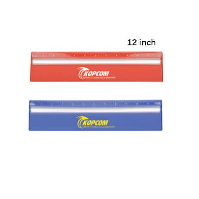 30cm Ruler with Colour and Magnifying (DS256TL_DEX)