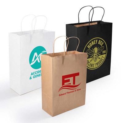 Express Paper Bag Medium  (LL548_LLNZ)