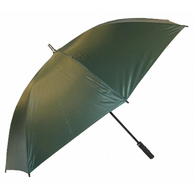 Eagle - Silver Umbrellas (WG008-S _NZPER)