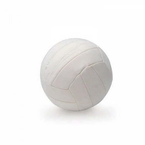 Neoprene Sports ball - (printed with 4 colour(s))