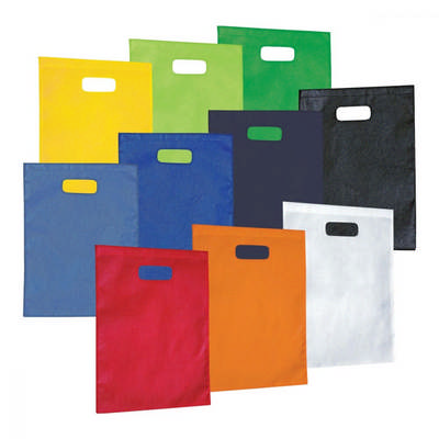 Non-Woven Gift Bag - Large (2007_PS)
