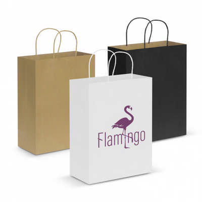 Paper Carry Bag - Large (107590_TRDZ)