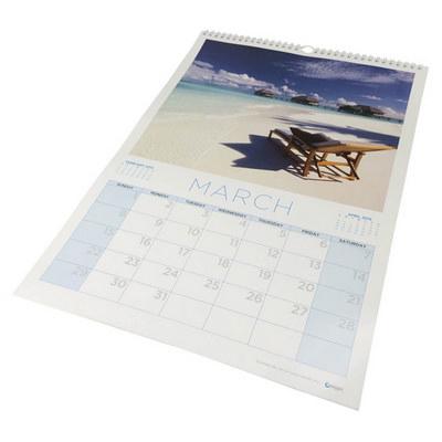 A3 wiro bound wall calendar (A3WALLCALENDA_OXY)