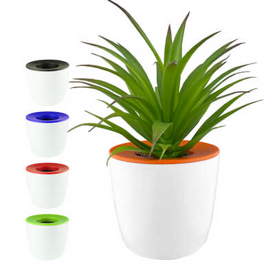 Mini Desk Plant Pot