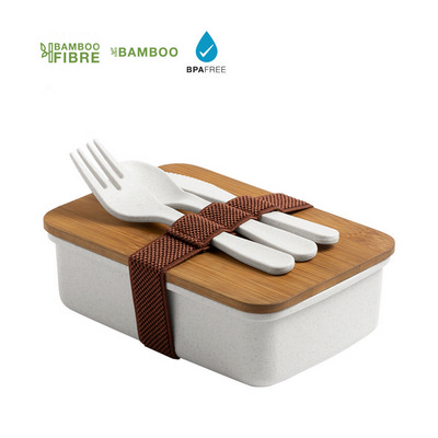 Lunch Box Bilsoc (M6551_ORSO_DEC)