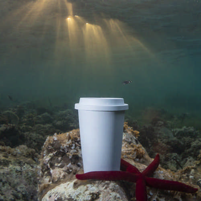 Cup Petel (M6676_ORSO_DEC)