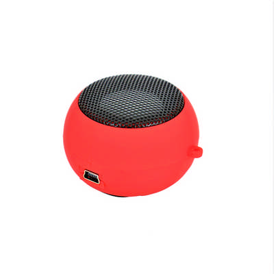 Hamburg Speaker with Cable