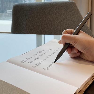Picasso Carbon Fibre Pen