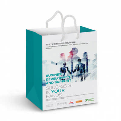 Medium Laminated Paper Carry Bag - Full Colour - (printed with 4 colour(s))